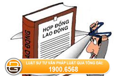 Chua-du-18-tuoi-thi-co-lam-ho-so-xin-viec-duoc-khong