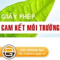 Cong-ty-hoat-dong-trong-linh-vuc-in-an-quang-cao-co-phai-lam-cam-ket-bao-ve-moi-truong-khong