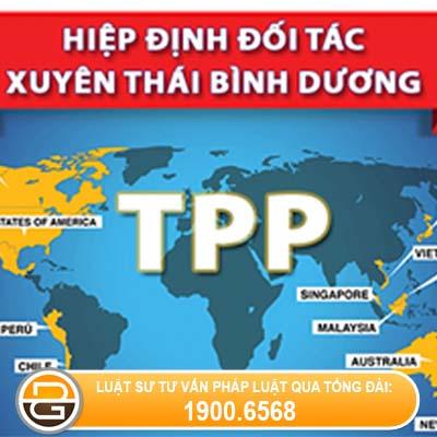 hiep-dinh-TTP