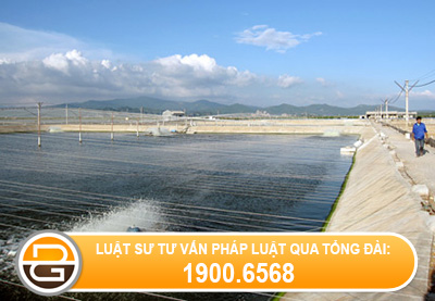 hinh-thuc-su-dung-dat-nuoi-trong-thuy-san-cua-ho-gia-dinh%281%29