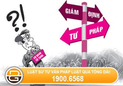 quy-dinh-ve-viec-giam-dinh-ty-le-thuong-tat