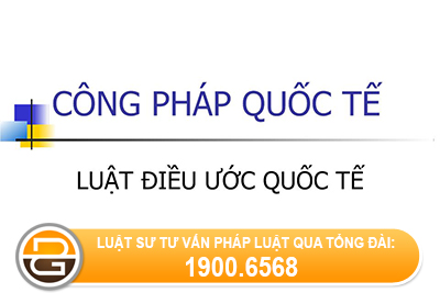 quyen-nang-cua-to-chuc-quoc-te-lien-chinh-phu-la-quyen-nang-phai-sinh-va-han-che