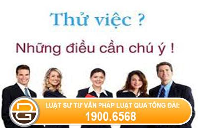 trong-thoi-gian-thu-viec-tu-y-nghi-viec-cong-ty-co-phai-tra-luong-khong.