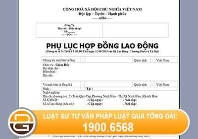 tu-van-ki-phu-luc-hop-dong-khi-sua-doi-bo-sung-noi-dung-cua-HDLD