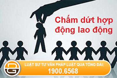 tu-y-ve-som-30-phut-co-bi-cham-dut-hop-dong-lao-dong-khong-
