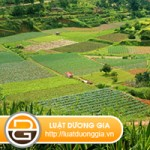 Hỗ trợ đào tạo nghề, chuyển đổi công việc khi thu hồi đất nông nghiệp class=