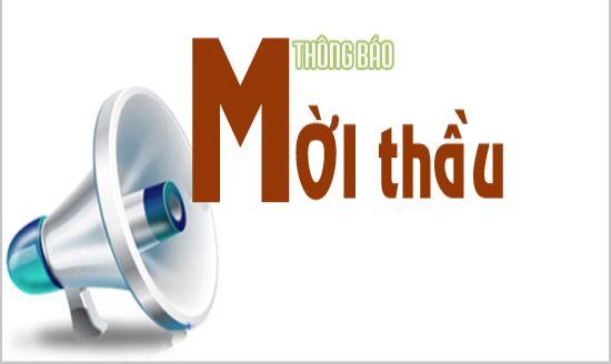 luat-dau-thau-nam-2013