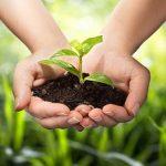 Phân biệt tội phạm về môi trường với vi phạm hành chính về môi trường