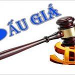 Nội dung và hình thức hợp đồng mua bán tài sản bán đấu giá