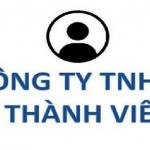 Quyền, nghĩa vụ của chủ sở hữu công ty TNHH một thành viên