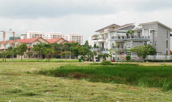 Đất trồng lúa có được xây nhà? Mức phạt khi xây nhà trên đất trồng lúa?