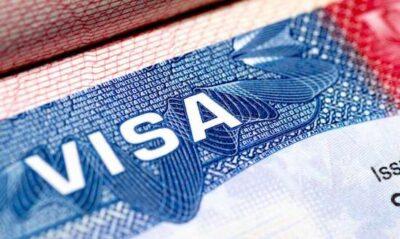 Thị thực là gì? Các loại thị thực? Quy định của pháp luật về thị thực?