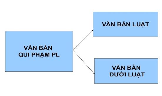 van-ban-duoi-luat-la-gi-so-sanh-phan-biet-van-ban-luat-va-van-ban-duoi-luat